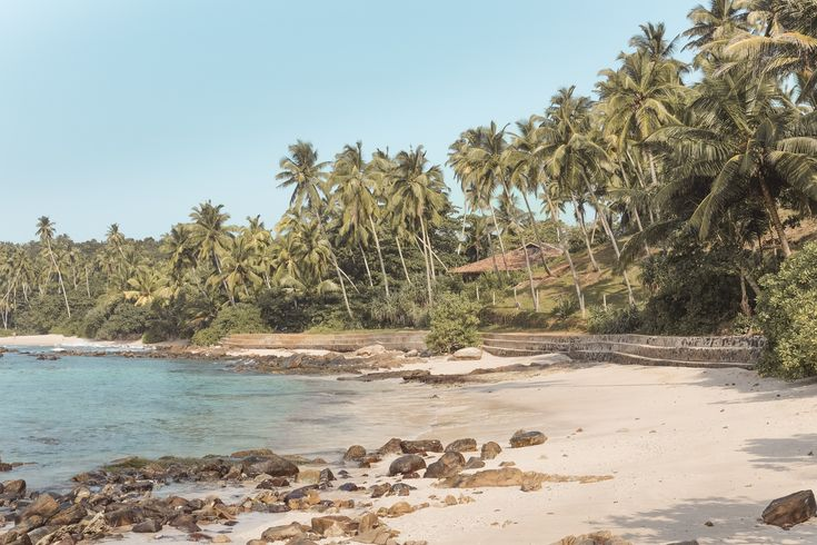 Sri Lanka was the first exotic destination we´ve ever visited. It was like all my dreams came true. And the best part of it was Cove House experience.