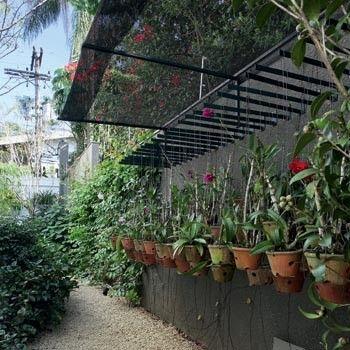 Feitos para o frio - Paixão da moradora, as orquídeas ficam em um canto reservado no corredor, entre camélias. Repare que até mesmo elas contam com uma tela de proteção contra o frio – item necessário quando expostas em áreas abertas. (Foto: Renato Corradi) (Foto: Renato Corradi)