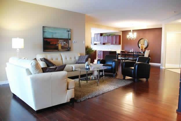 LDI - Tuxedo Condo Living Room