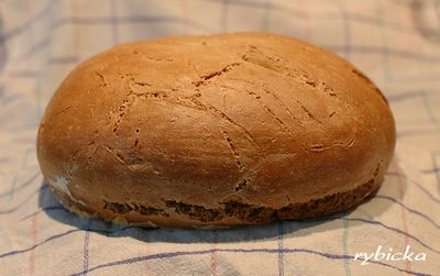 Obyčejný žitný chleba