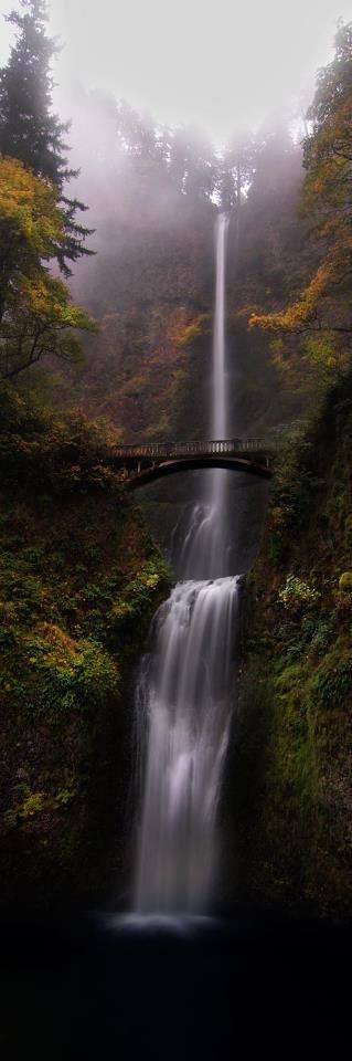Travelling - Multnomah Falls in the Columbia River Gorge near Portland, Oregon • Dax McMillan Photography