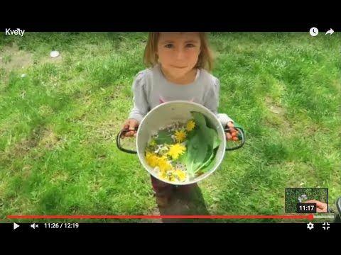 10 květnových jedlých květů I Síla pro život - YouTube