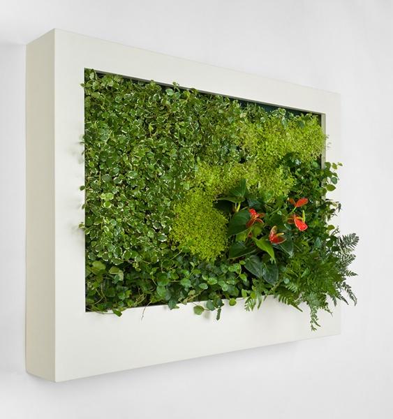 Lienzo natural for Pinterest jardines verticales