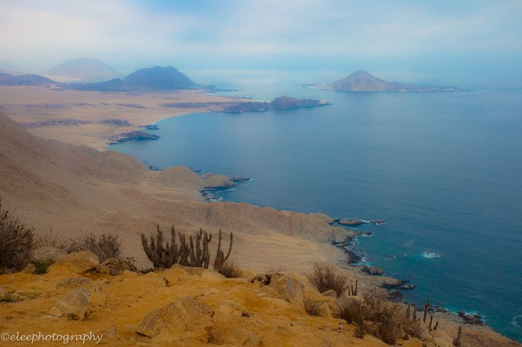 In the Atacama Desert, this national park protects some of Chile's finest coastline as well as many species of cactus. In the far distance is Isla Pan de Azucar, which is home to sea lions, Humboldt penguins, and many other seabirds.