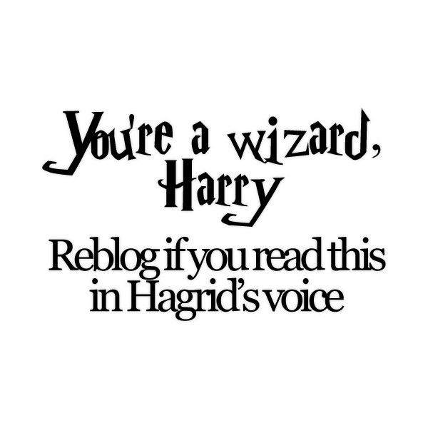 Show me the stars ❤ liked on Polyvore featuring harry potter, quotes, words, text, phrase and saying