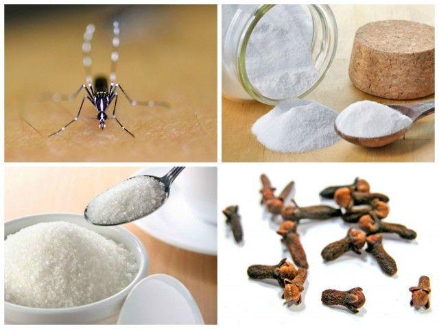 Insecticida y repelente para mosquitos y para las for Casa del insecticida
