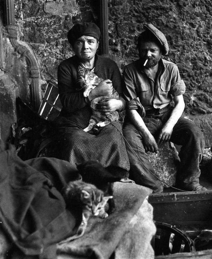 Robert Doisneau: Les chats des clochards, Paris 1950
