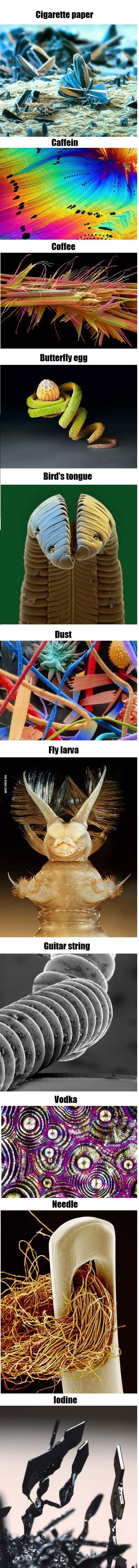 Some interesting stuff under microscope...