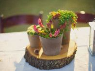 Wooden risers elevated the outdoor decor, complementing the rustic cake tables and woodsy lakeside setting. These  cherry tree  slices were later turned into bowls by the woodworking groom and slabs for growing  staghorn ferns .