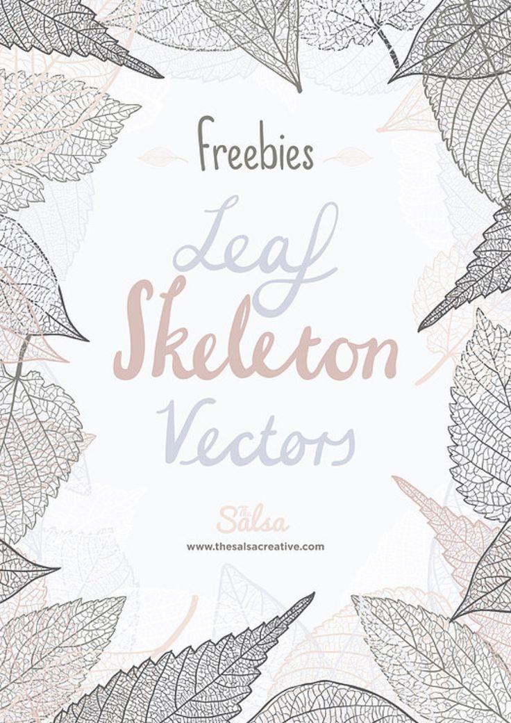 Leaf Skeleton Free Vectors /Volumes/Marketing/_MOM/Design Freebies/Free Design Resources/Leaf_Skeleton_Vector