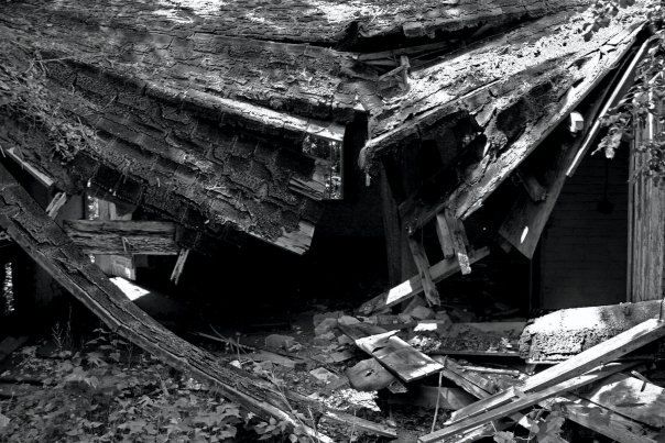 Decay by BourgeoisPhoto on Etsy, $10.00