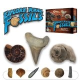 Explore Real Fossils Beginner Science Kit (Toy)By Dr. Cool Science
