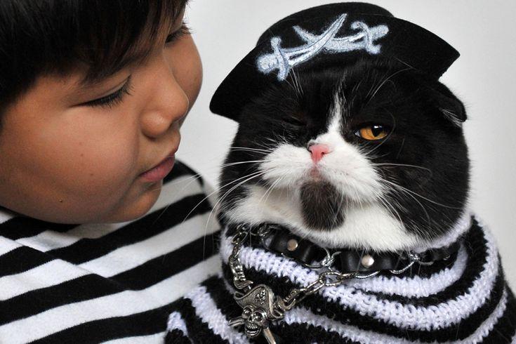Un baieţel ţine în braţe o pisică din rasa Scottish Fold îmbrăcată într-un costum de pirat, în timpul unei expoziţii feline în Bişkek, Kârgâzstan, duminică, 14 octombrie 2012. (  Vyacheslav Oseledko / AFP  ) - See more at: http://zoom.mediafax.ro/news/cats-in-the-news-12976632#sthash.kVUHaMTi.dpuf