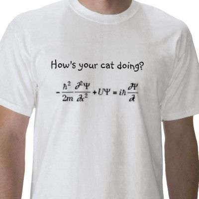 How's your cat doing? (time independent Schrödinger ...