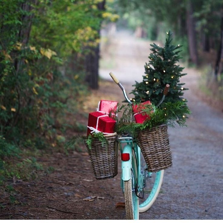 @frenchcountrycottage we like your holiday shopping style🚲. We're making our lists too. Follow link in profile to see a few favorite picks. #mysouthernholiday
