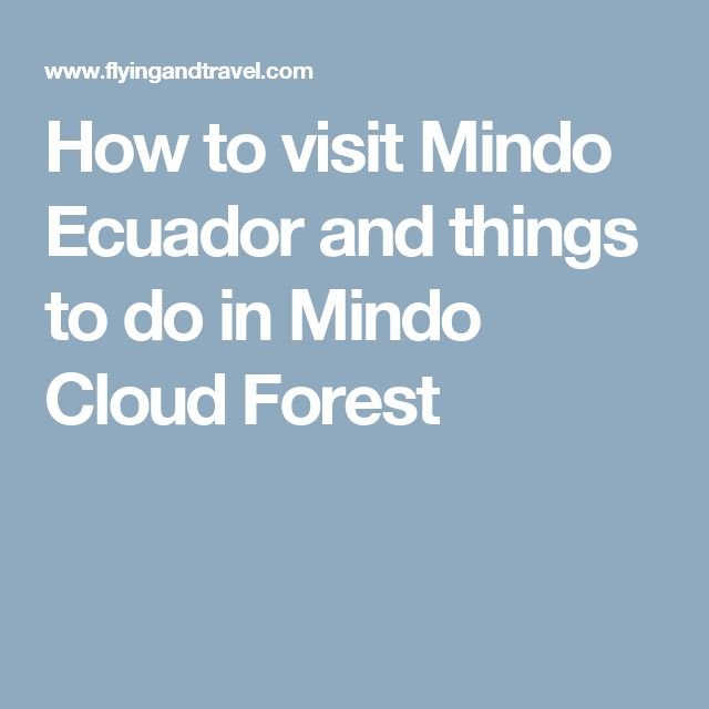 How to visit Mindo Ecuador and things to do in Mindo Cloud Forest