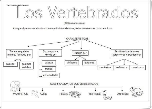 """""""Los vertebrados"""" es un muy buen conjunto de seis esquemas sobre los animales vertebrados. De miscosasdemaestra.blogspot.com.es."""