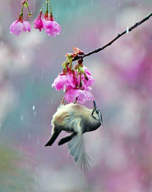 hanging on...