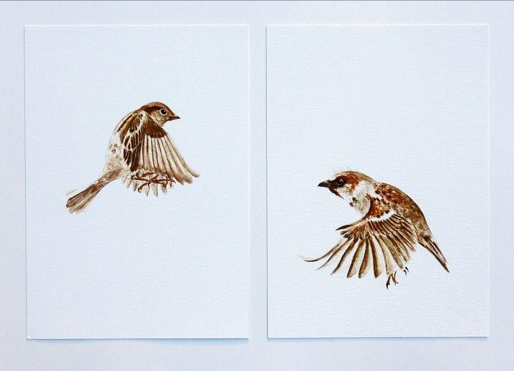 Flying Sparrow Drawing  Girl A Giclee Print Felt New Tattoo Ideas