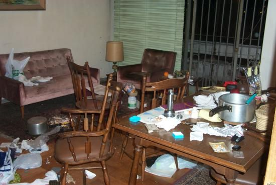 New Zealand's Morning-After Maids Are Cleaning Up After Wild Parties