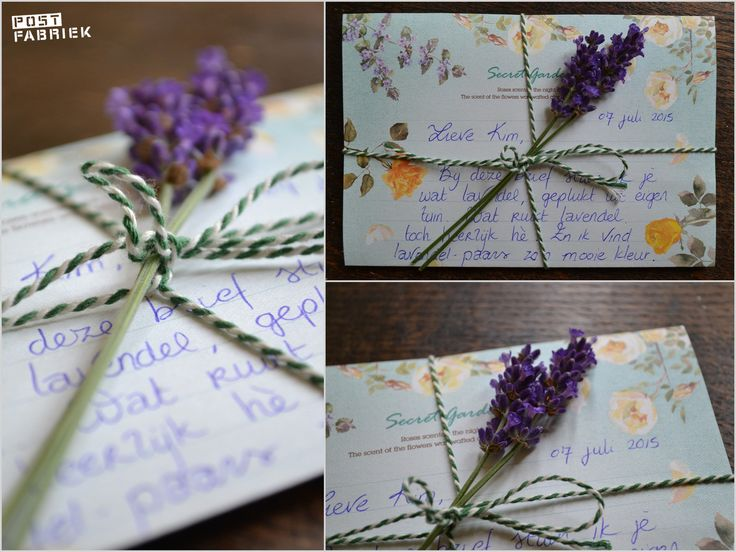 Bloemen Drogen Lavendel-001