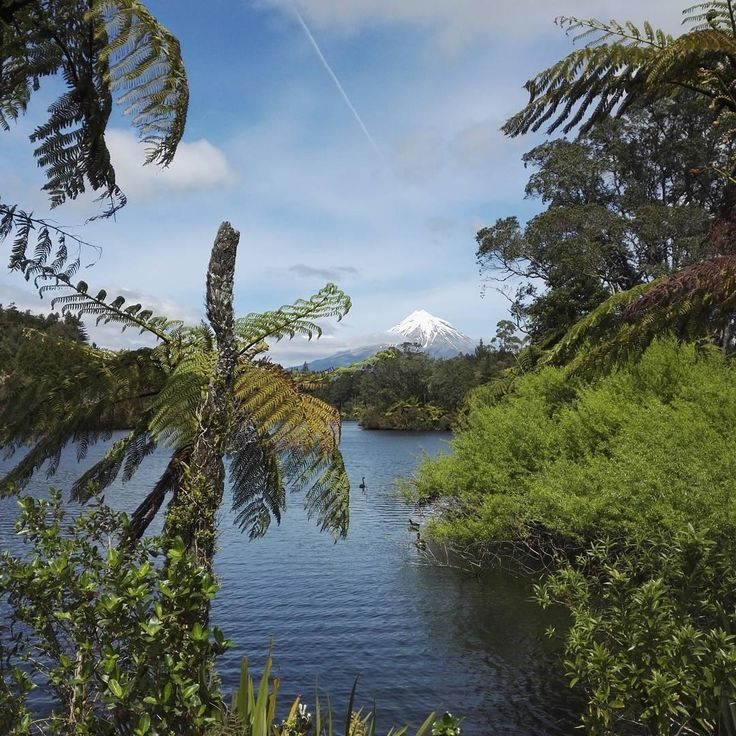 The Egmont National Park is one of New Zealand's most accessible wilderness areas and comes complete with many beautiful walks and hikes.