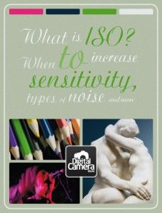 What is ISO? When to increase sensitivity, types of noise and more