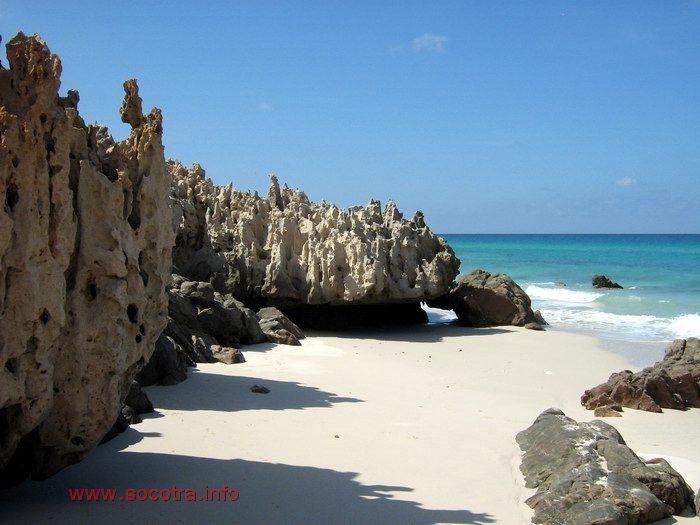 yemen Socotra