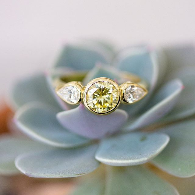 Double-tap if you love this Fancy yellow diamond engagement ring flanked by white diamond pears! As seen here with our favourite #desertrose #succulent #luckygirl @freerangejewels