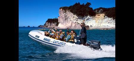 Hahei Explorer | Coromandel Adventures |