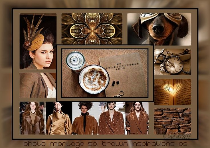 Photo montage 50. Brown inspirations 02