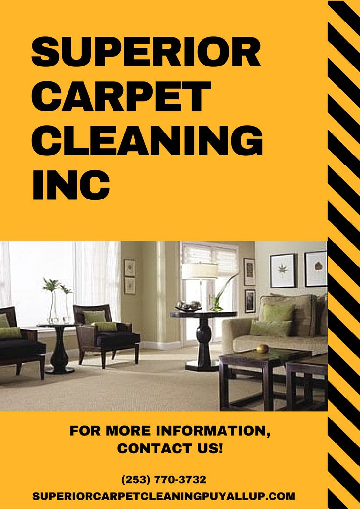 Carpet Steam Cleaning Upholstery Cleaning Air Duct Cleaning Tile and Grout  Cleaning Pet Stain and Odor. The 25  best Affordable carpet cleaning ideas on Pinterest   Gray