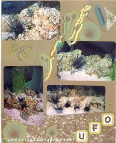 Aquarium Scrapbook Layout 7 RightScrapbook Layout