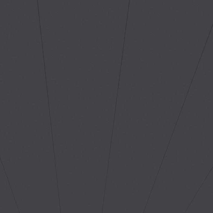 PanOflair Anthrazit 2600x246x10mm Wandpaneel und Deckenpaneel | Textur Paneel | Paneele | Wand & Decke | www.holz-direkt24.com