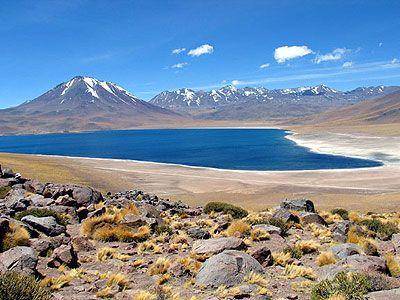 Laguna Miscanti - Northern Chile