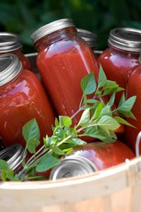 Stewed Tomatoes - Fantastic for those hardy winter stews, pastas sauces and lasagnas - Pressure cooker
