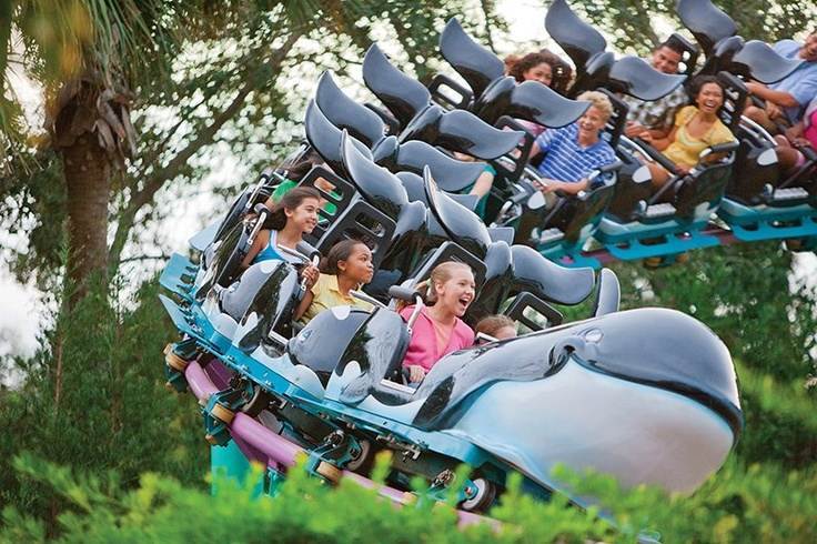 Shamu shows a soft spot for kids on this just-thrilling-enough first coaster, the Shamu Express at SeaWorld Orlando.
