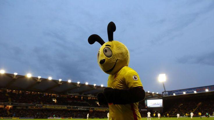 Sam Allardyce wants action against Watford mascot for mocking Zaha