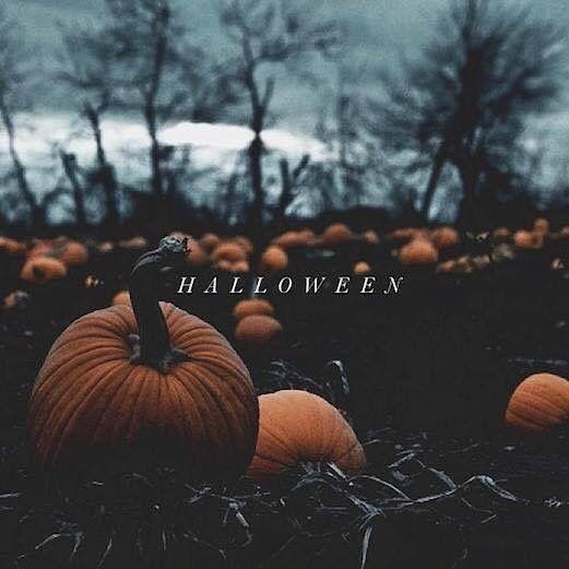 111 day til halloween