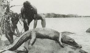 Image result for aboriginal emu meat