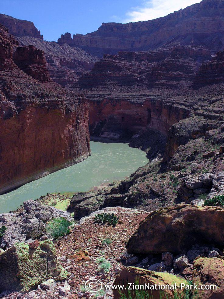 Arizonau0027s North Rim of the Grand Canyon
