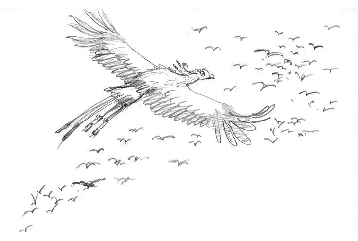 pencil character sketch for Leonard with other birds flying. #leonarddoesntdance #bird #secretarybird #picturebook #charactersketch #franceswatts