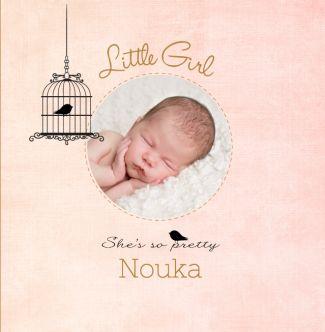 Lieve geboortekaart met een vogelhuisje en een foto. Gebruik deze kaart en maak hiervan zelf je eigen persoonlijke geboortekaartje. Wil je de kaart door ons laten opmaken? Geen probleem, wij helpen je graag!