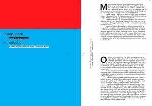 Dincolo de oras. Beyond the city  Edited by Cosmina Goagea, Constantin Goagea, Stefan Ghenciulescu, Cosmin Caciuc Romanian / English Softcover 2013 ISBN/ISSN: 978-606-638-076-8