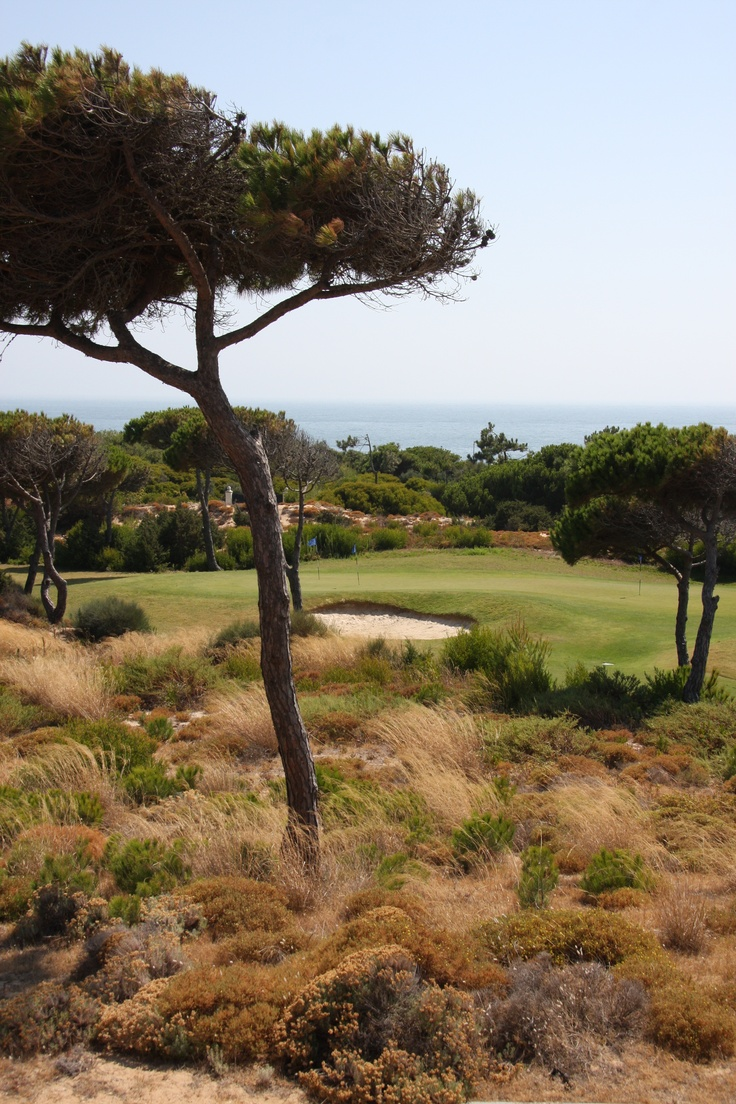 The Golf Park it is set among pine woods and reforested dunes, in an area of great natural  beauty