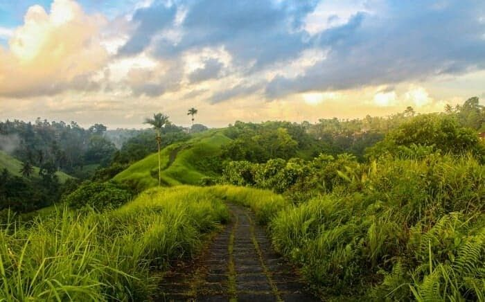 30 Pemandangan Indah Kota Bali 38 Tempat Wisata Di Bali Yang Hits Populer Buat Liburan Download 8 Restoran Di Bali Dengan Pemandang Di 2020 Pemandangan Bali Ubud