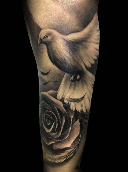 Resultado de imagem para dove bird realistic tattoos