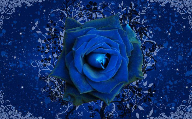 1000 ideas about rose wallpaper on pinterest flower - Rose screensaver ...