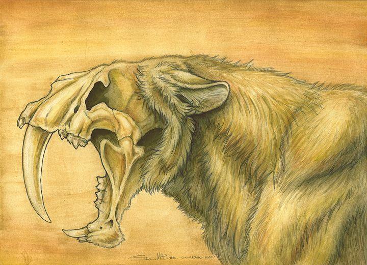 Smilodon Face By Pyroraptor42 On Deviantart: Smilodon - Buscar Con Google