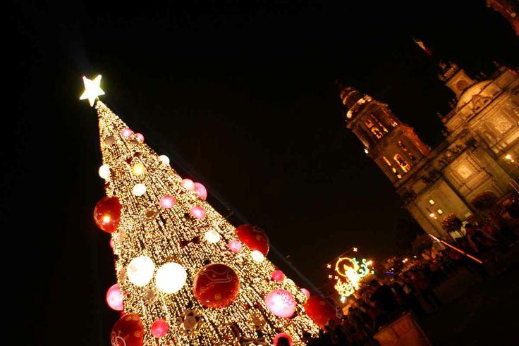 Árbol de Navidad, plaza de la Constitución, al fondo Catedral Metropolitana.